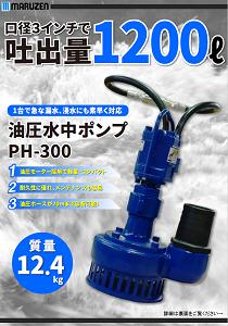 PH-300